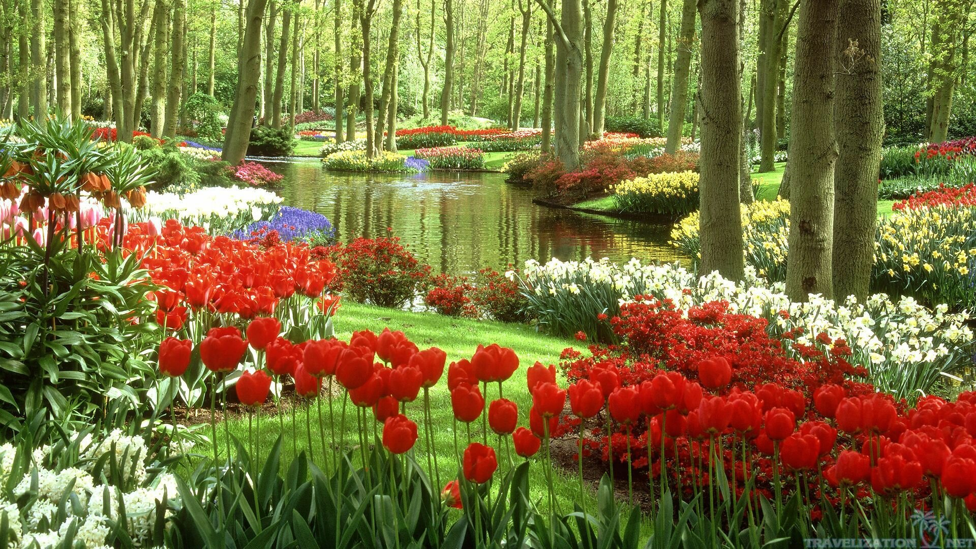 28 beautiful gardens like dream mostbeautifulthings for Beautiful garden images hd