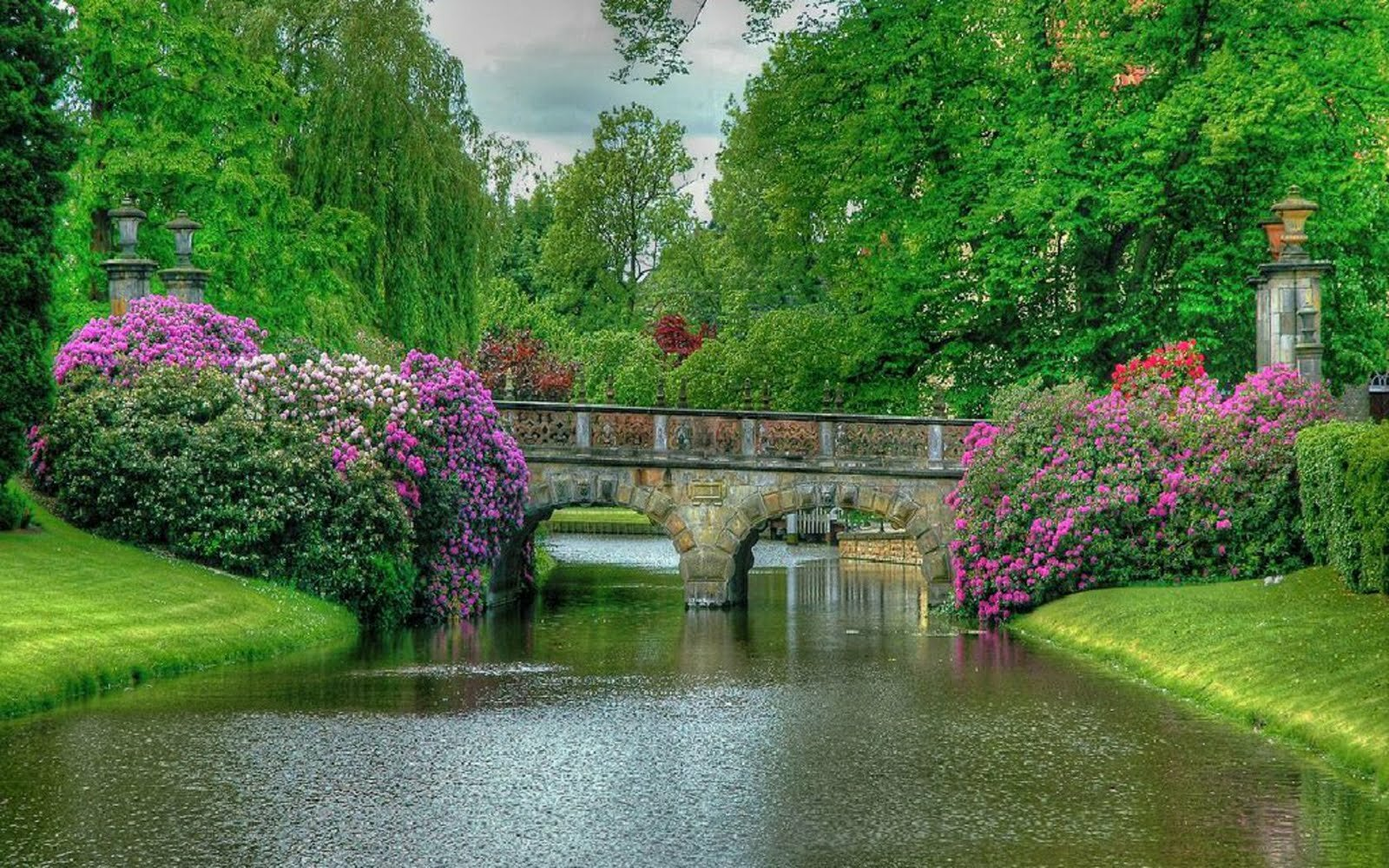 28 beautiful gardens like dream mostbeautifulthings for The water garden