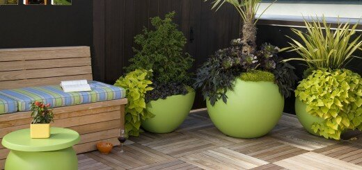 beautiful flower pots 2