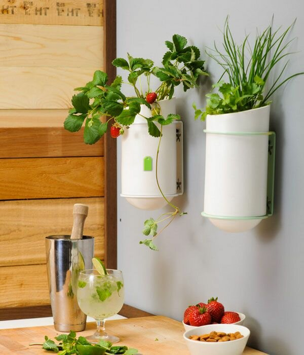 kitchen wall decor 1 - Kitchen Wall Decorations