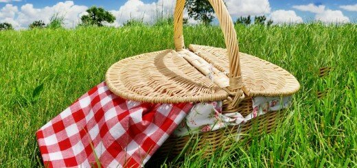 picnic basket 29