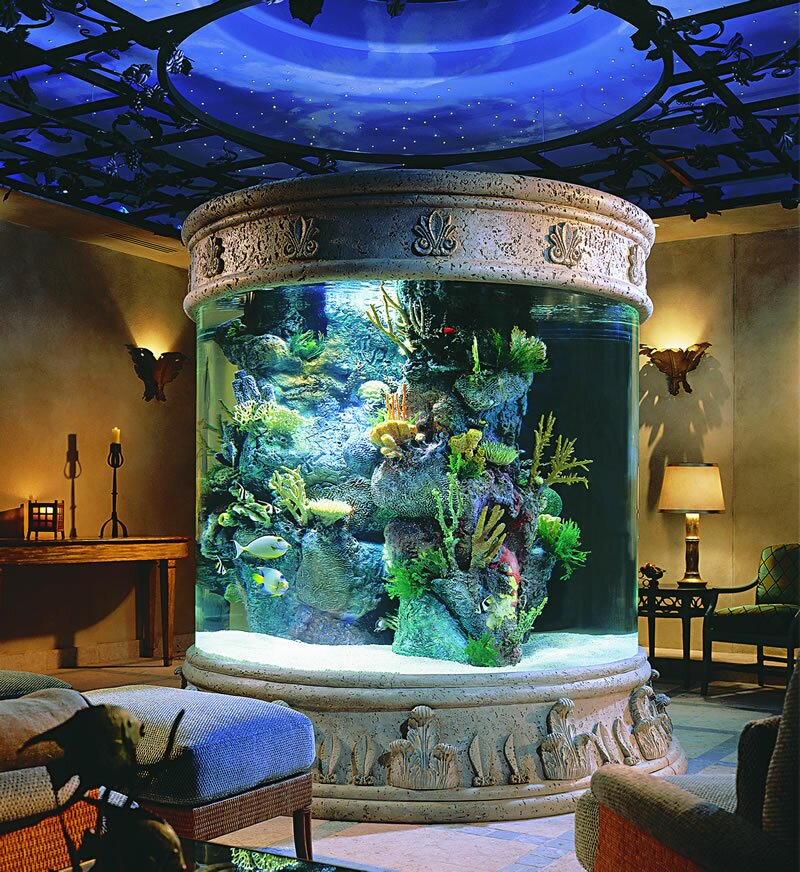 16 fish tank decorations that will inspire you for Aquarium decoration design