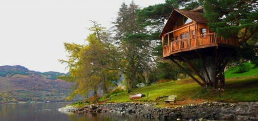 amazing tree house designs 1