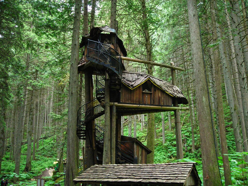 Amazing Tree House Designs Decoration Home Goods Jewelry Design