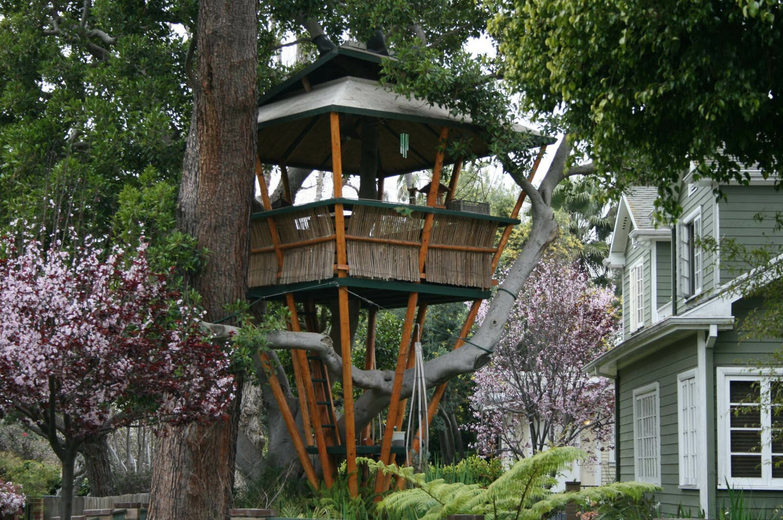 18 amazing tree house designs mostbeautifulthings for Amazing home designs