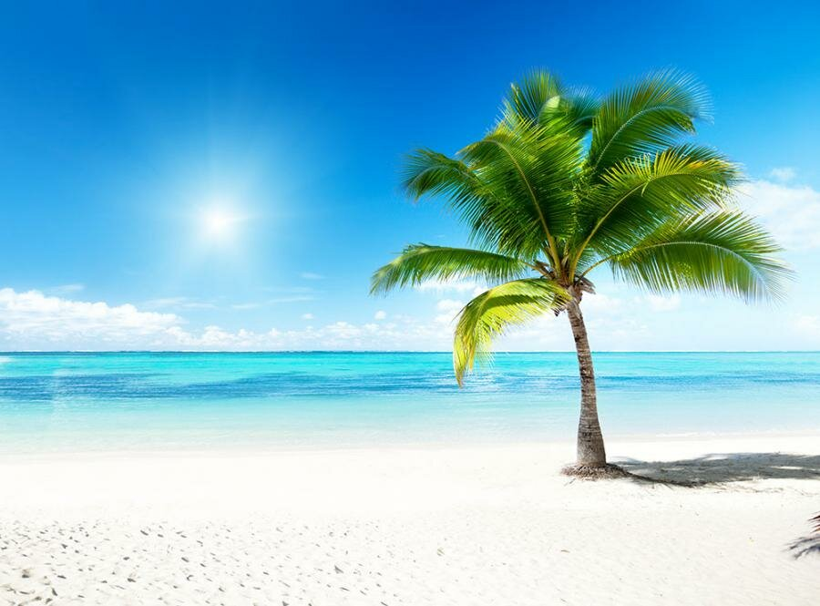 palm beach singles over 50 40's 50's 60's+ singles trips africa  singles vacations, weekends and trips are you in you 40's,  great beach - loads of fun .