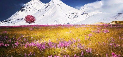17 selected beautiful landscapes